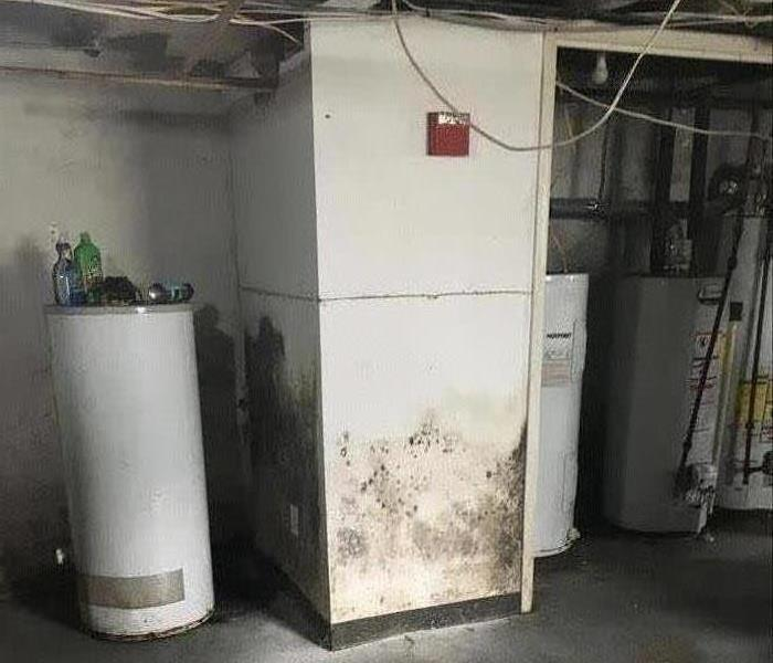 Mold In Apartment: SERVPRO Of Upper Bucks Gallery Photos