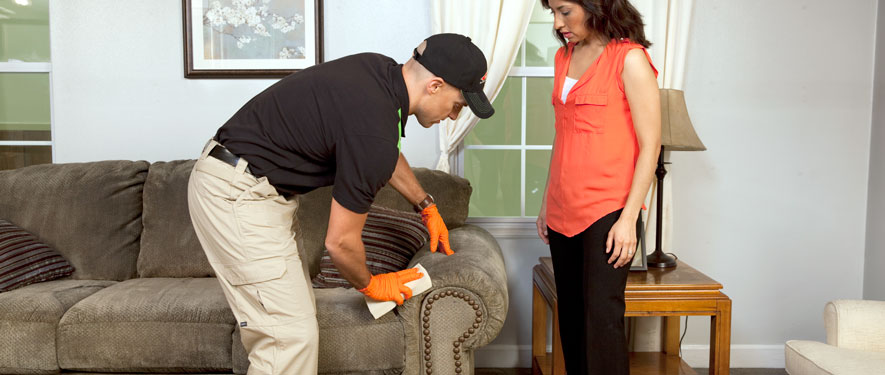 Quakertown, PA carpet upholstery cleaning